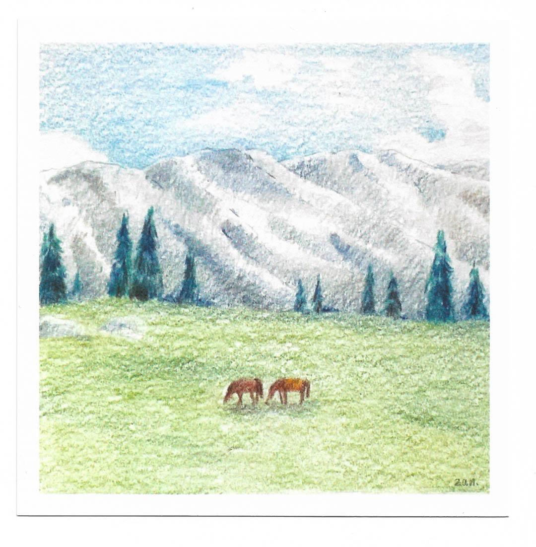 Postcard - Kashmia
