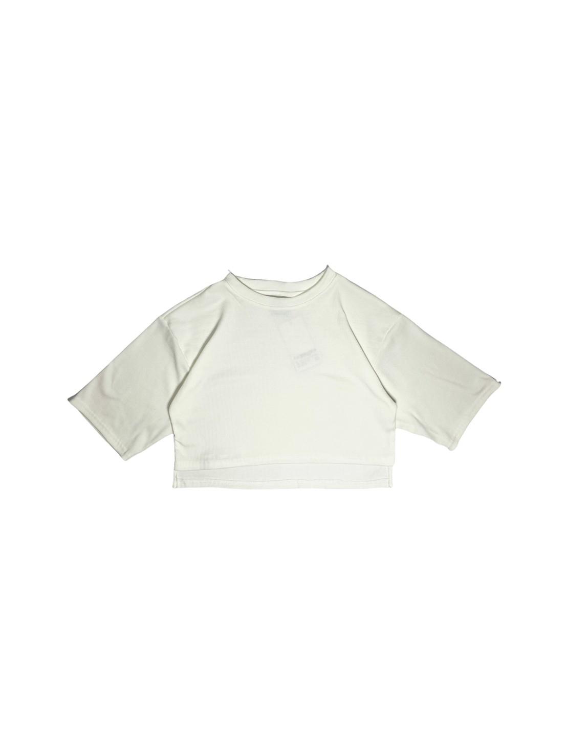 Aster (White)