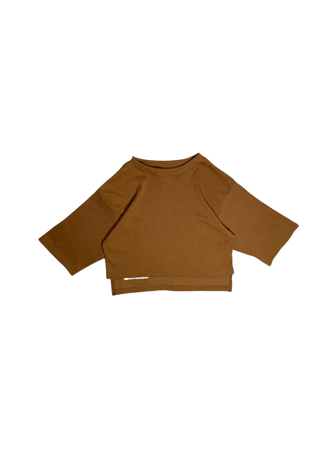Aster (Brown)