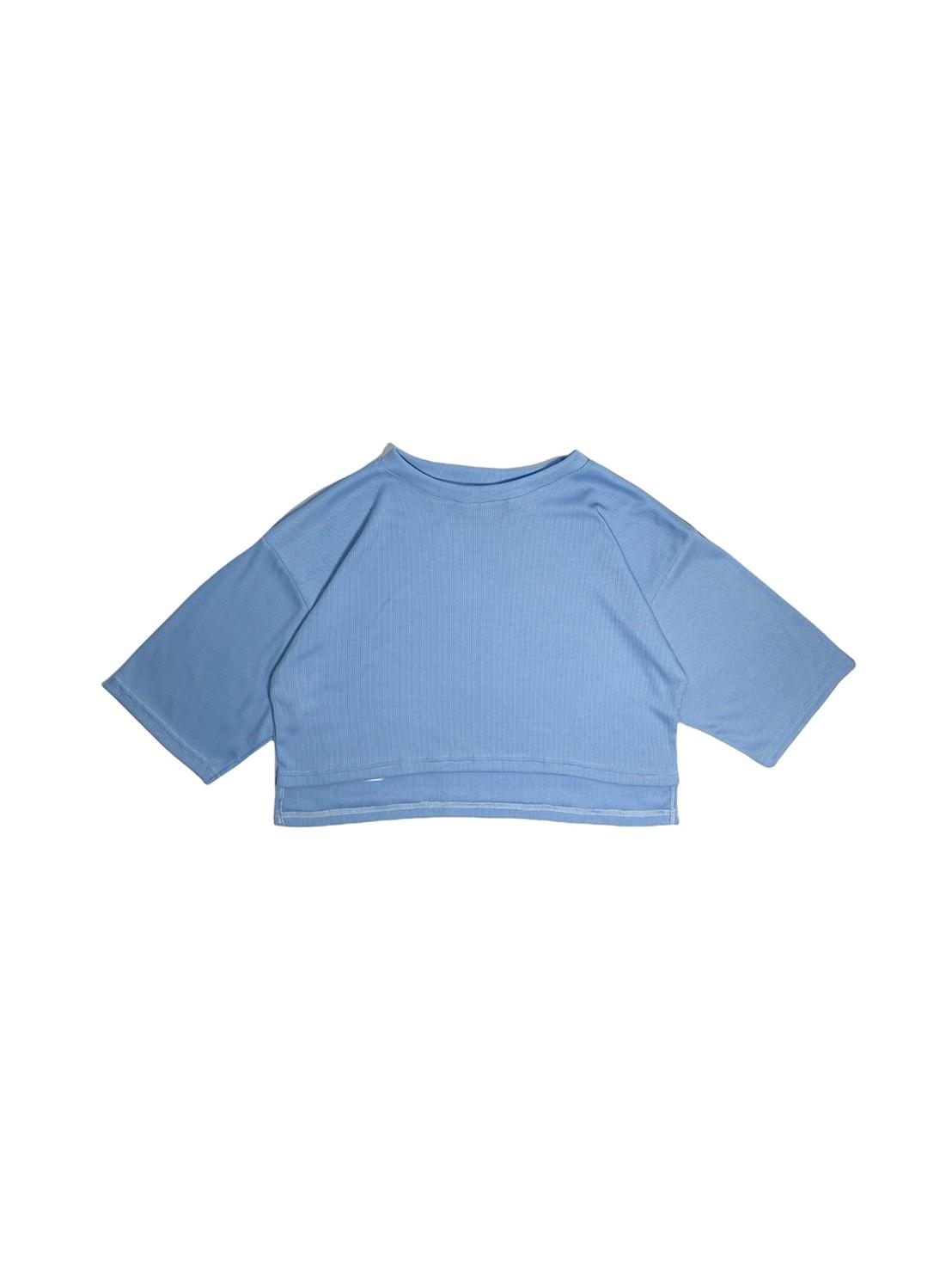 Aster (Blue)