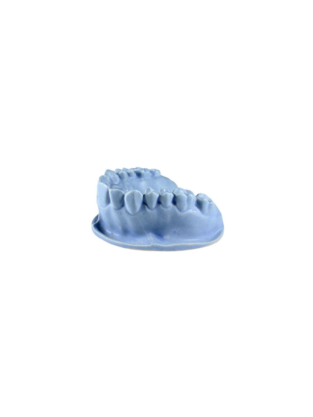 Teeth (Ceramic)
